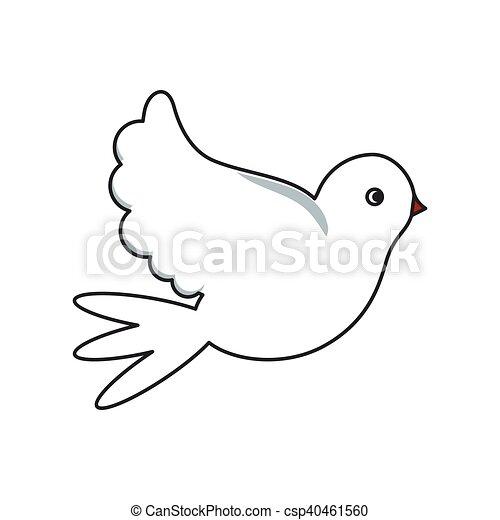Colomba Disegno Isolato Uccello