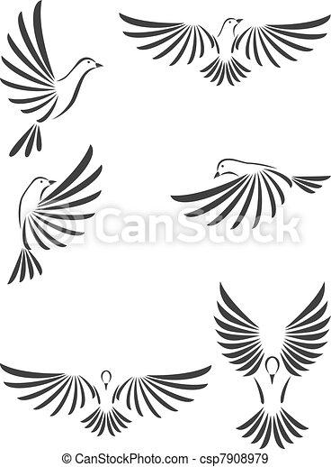 colombe - csp7908979