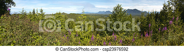 Vista panorámica del bosque canadiense. Vancouver. Columbia Británica - csp23976592