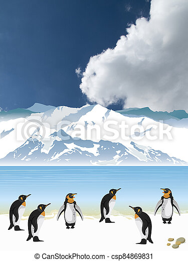 Colony of penguins - csp84869831