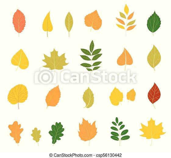 coloré, automne, leaves., ensemble - csp56130442