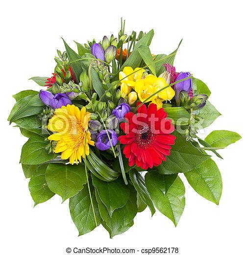 coloré, bouquet, isolé, arrière-plan., fleurs blanches - csp9562178