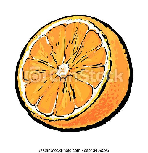 Color r aliste juteux illustration main orange - Orange dessin ...
