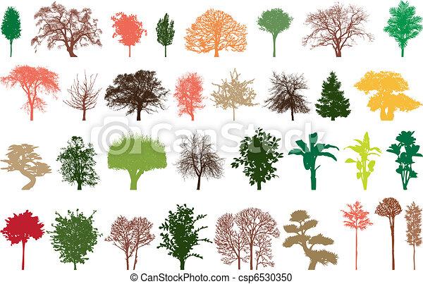Color árboles Ilustración