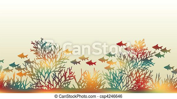 Color coral - csp4246646