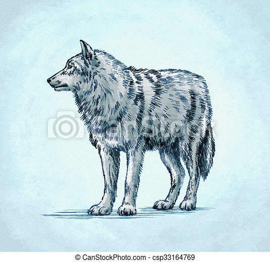 Color Engrave Ink Draw Wolf Illustration Color Engrave Ink Draw