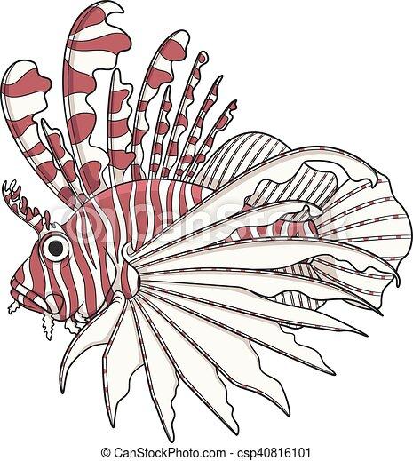 Color image lionfish. - csp40816101