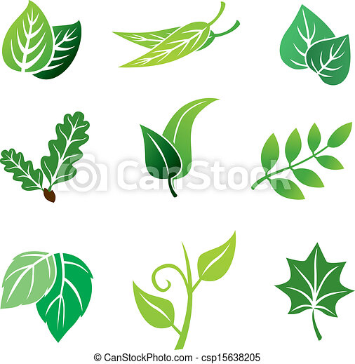 Color leaves set - csp15638205