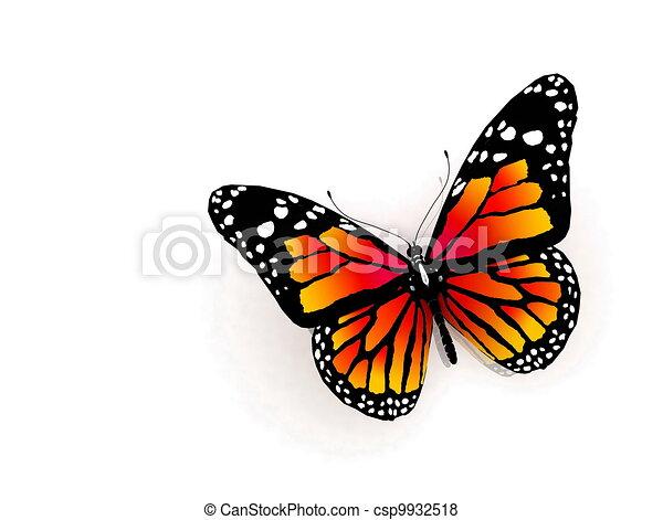 Color mariposa, aislado, naranja. Color mariposa, aislado, plano de ...