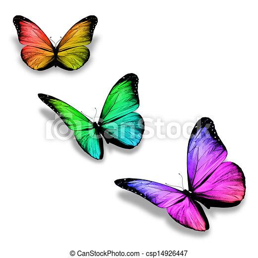 Color, mariposas, tres. Color, blanco, mariposas, tres, aislado.