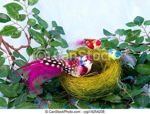Pájaros de color en el nido - csp14254238