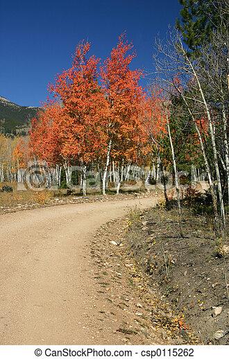Colorado Color - csp0115262
