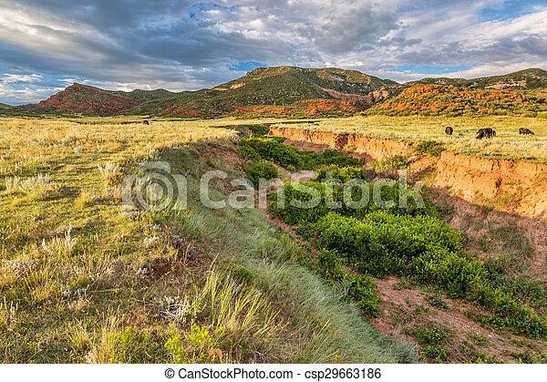 Colorado foothills at sunset - csp29663186