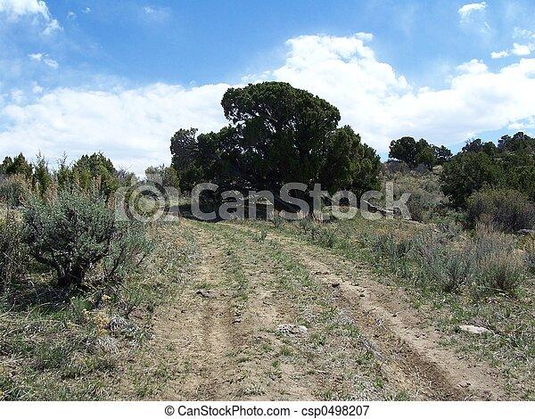 Colorado - csp0498207
