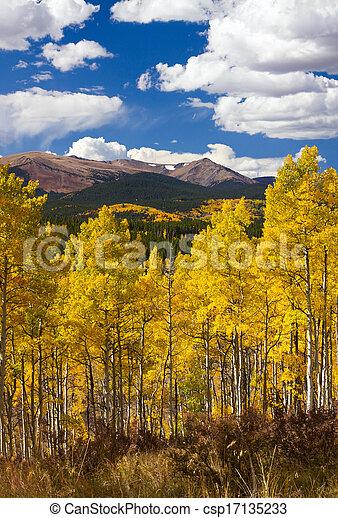Colorado Rocky Mountains Fall Landscape - csp17135233