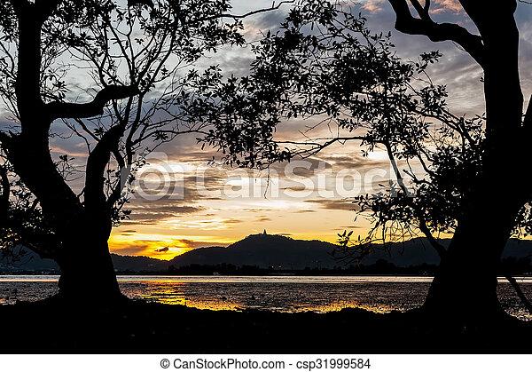 colorare, albero, silhouette, tramonto, grande - csp31999584