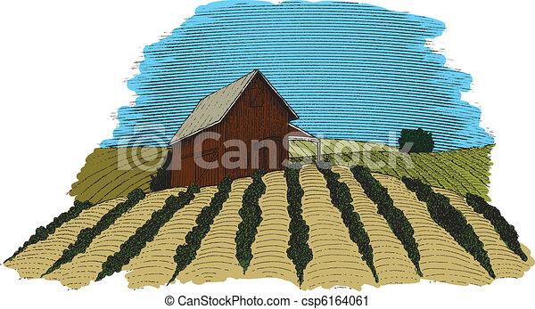 colore fattoria, scena - csp6164061