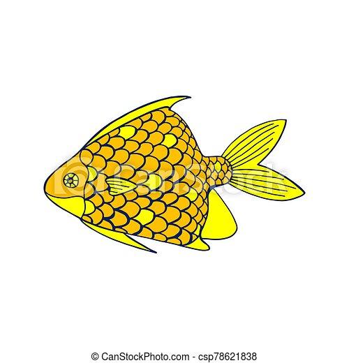 coloreado, vector, blanco, ilustración, pez, fondo., mar - csp78621838