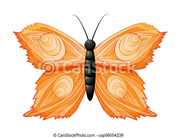 Colored butterfly isolated on white - csp56054239