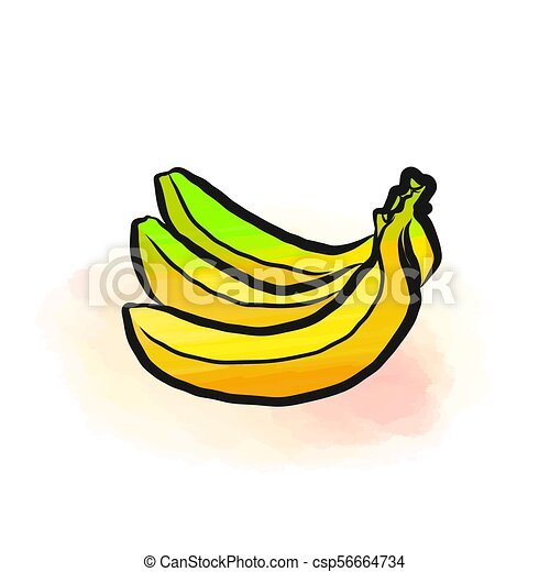 Colored Drawing Of Bananas Fresh Design Colorful Fruits Made In Watercolor Style Modern Marketing Illustration On White Background