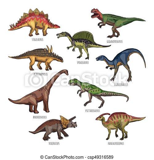 Colored illustrations of different dinosaurs types. tyrannosaurus ...