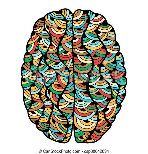 colored sketchy human brain doodle decorative curves outline rh canstockphoto com human brain clip art black and white human brain pictures clip art