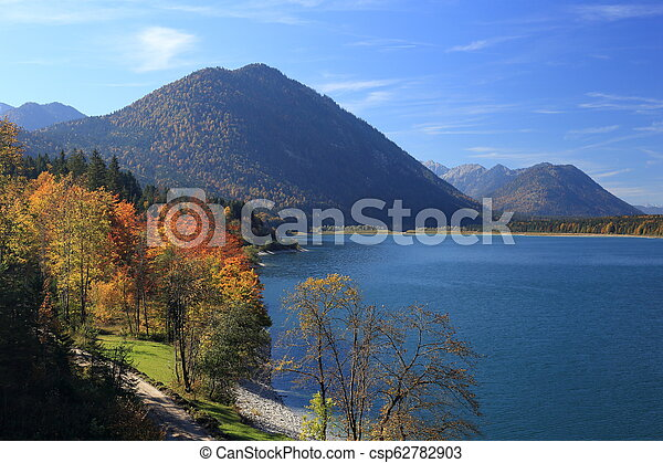 colored trees on autumn landscape - csp62782903