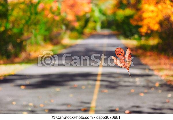 Colorful Autumn Fall Nature - csp53070681