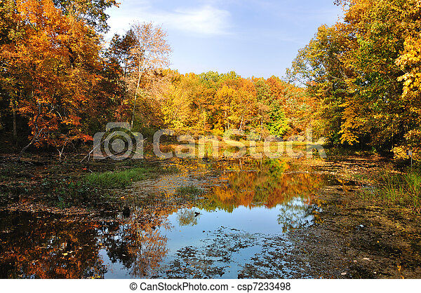 colorful autumn forest with lake - csp7233498