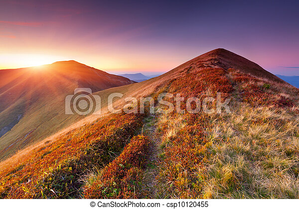 Colorful autumn landscape in the mountains. Sunrise - csp10120455
