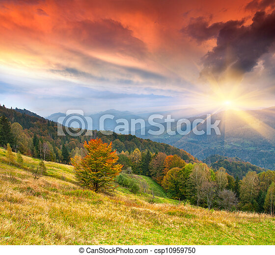 Colorful autumn landscape in the  mountains - csp10959750