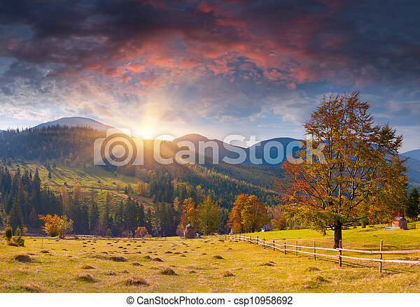Colorful autumn landscape in the mountains. Sunrise - csp10958692