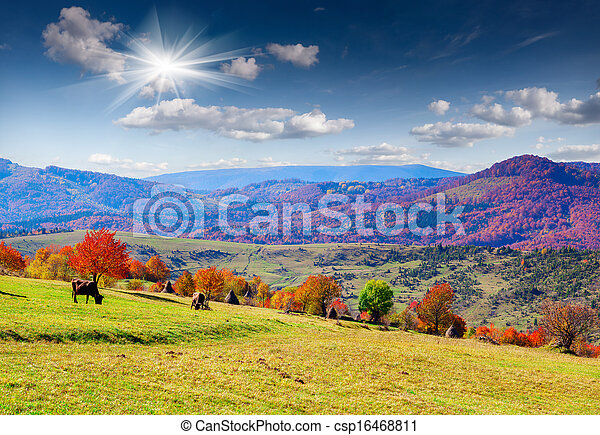 Colorful autumn panorama of the mountains - csp16468811