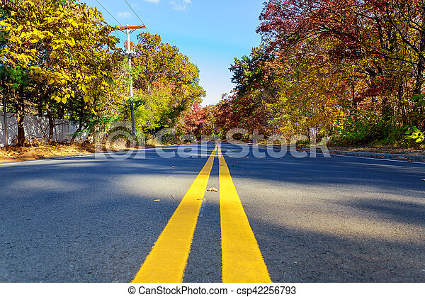 Colorful autumn trees with fallen leaves a winding road - csp42256793