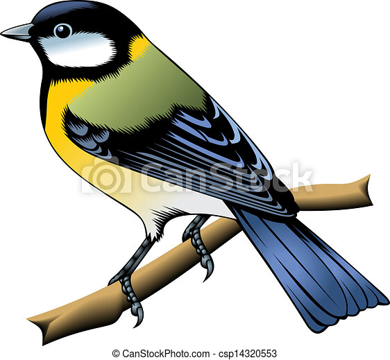 colorful bird - csp14320553