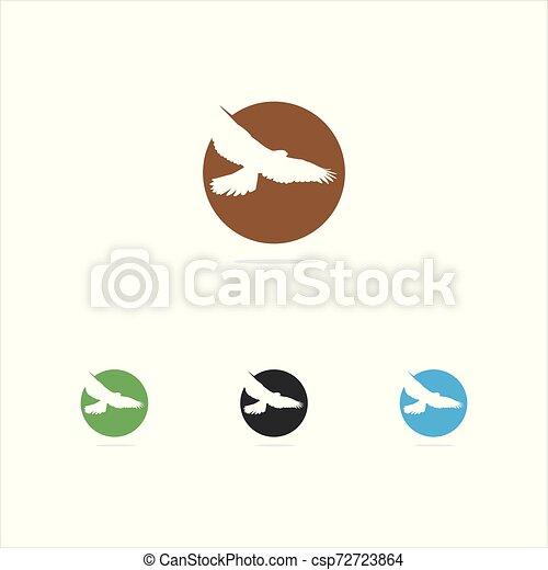 colorful bird illustration, eagle, falcon, hawk, in circle vector logo design - csp72723864