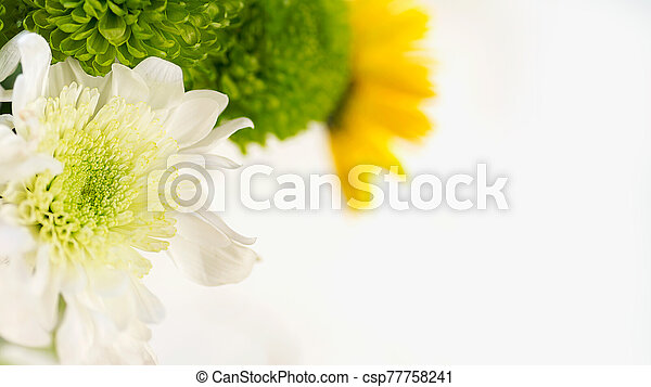 colorful bouquet of chrysanthemums on a light background green and yellow colors macro selective focus - csp77758241