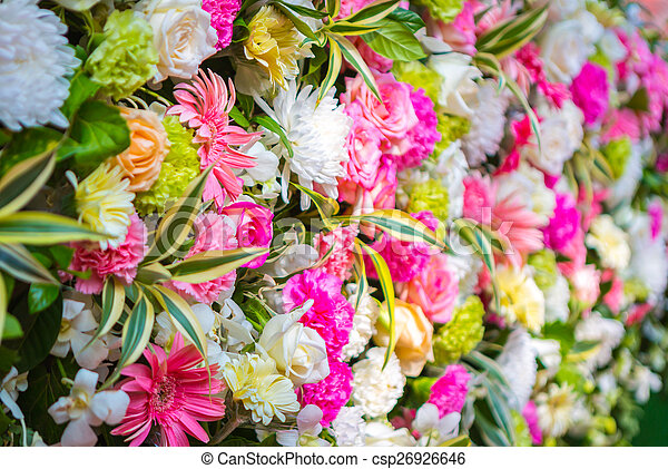 Colorful Bunch of flowers - csp26926646