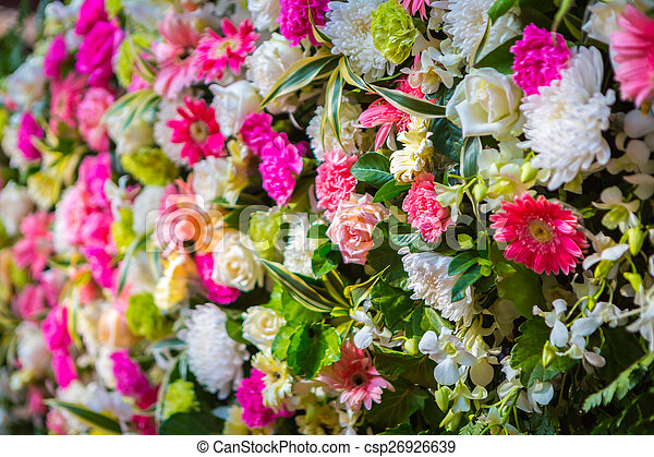 Colorful Bunch of flowers - csp26926639