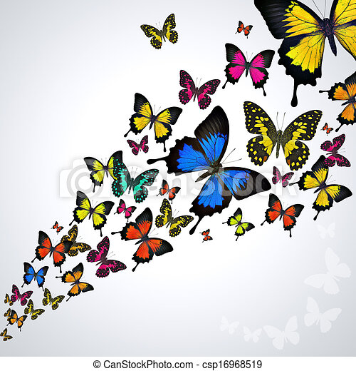 Colorful Butterflies Swarm Of Butterflies Flying On White Background
