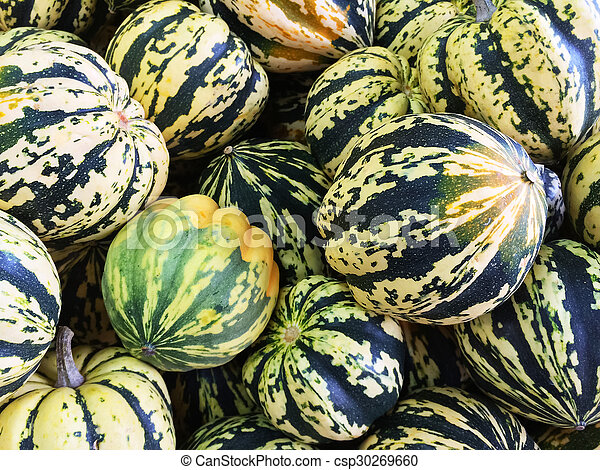 Colorful Carnival squashes - csp30269660