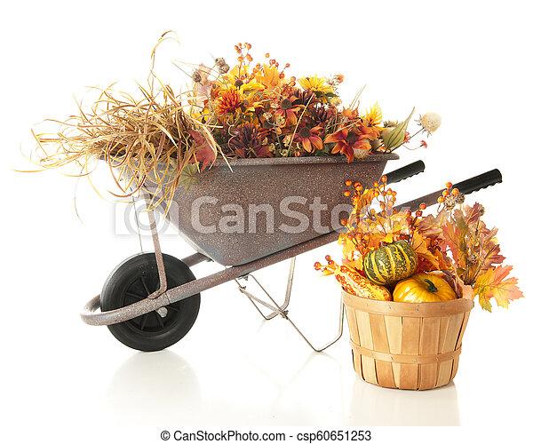 Colorful Cut Foliage - csp60651253