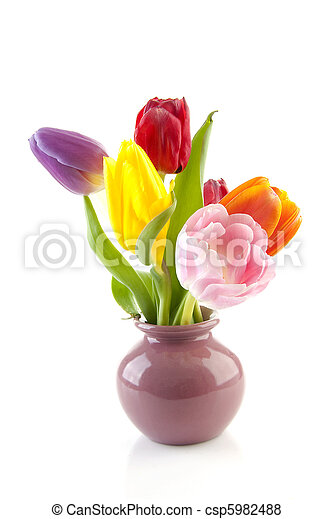 Colorful Dutch Tulips In Vase Colorful Dutch Tulips In Vase Over