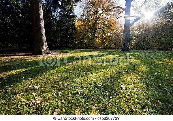 Colorful fall autumn park - csp8287739