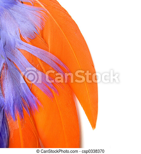 Colorful feathers  - csp0338370