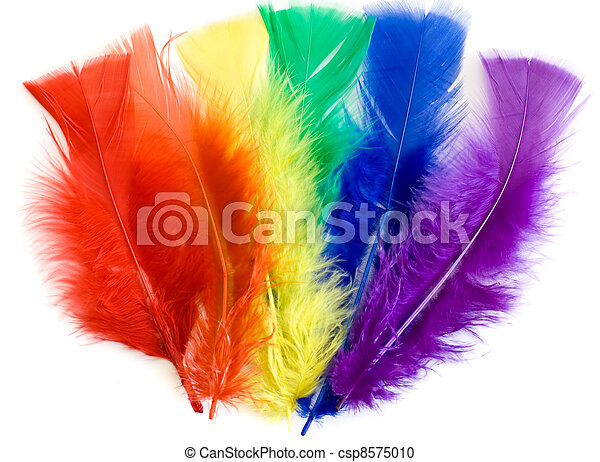 colorful feathers - csp8575010