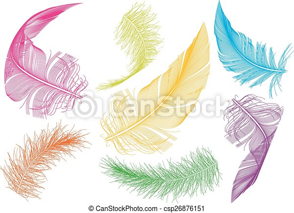 colorful feathers, vector set - csp26876151