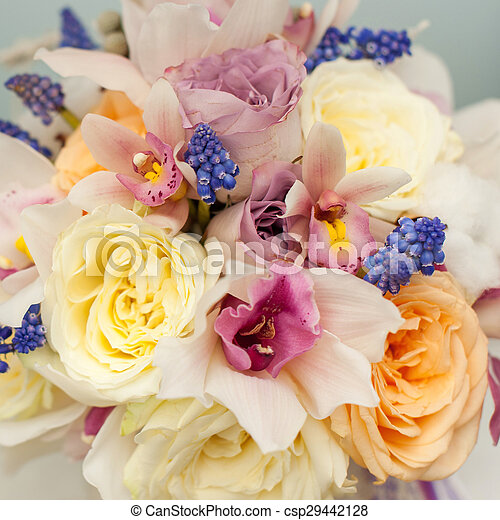 Colorful flower composition - csp29442128