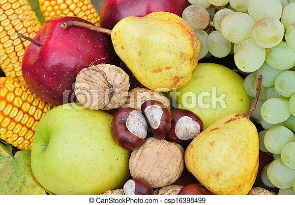 Colorful fresh autumn fruits - csp16398499