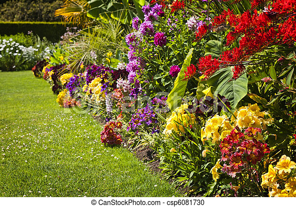 Colorful garden flowers - csp6081730